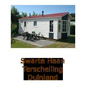 Swarte Haan